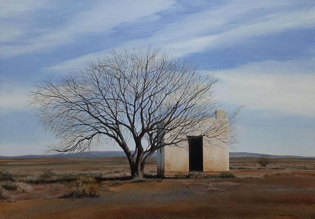 Tankwa Landscape